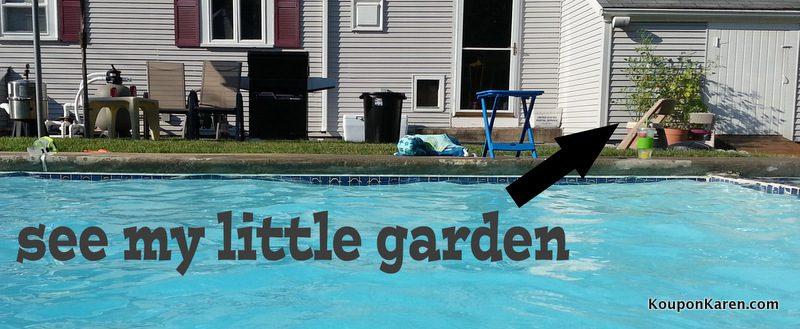 1-Little Garden Picture