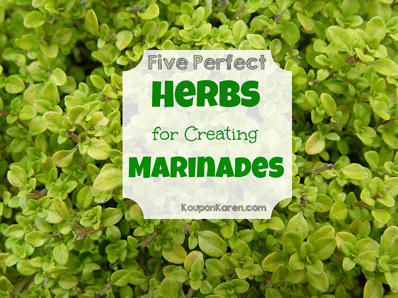 Five Perfect Herbs for Making Marinades