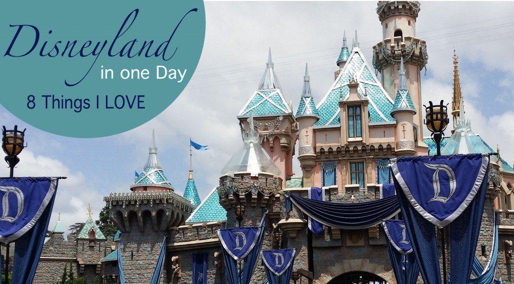 Disneyland-8-Things