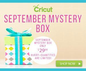Cricut-Sept-Mystery-Box