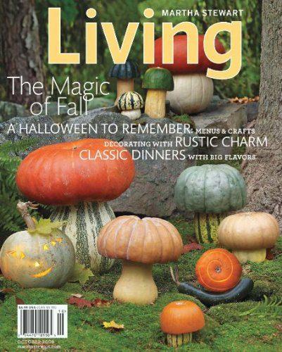 Martha Stewart Living Magazine Deal